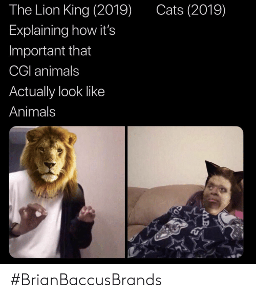 Animals, Cats, and The Lion King: The Lion King (2019)  Cats (2019)  Explaining how it's  Important that  CGI animals  Actually look like  Animals #BrianBaccusBrands