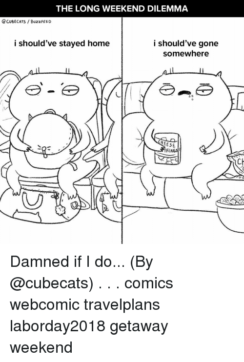 dilemma: THE LONG WEEKEND DILEMMA  Q CUBECATS BUzzFEED  i should've stayed home  i should've gone  somewhere  EESE  CH Damned if I do... (By @cubecats) . . . comics webcomic travelplans laborday2018 getaway weekend