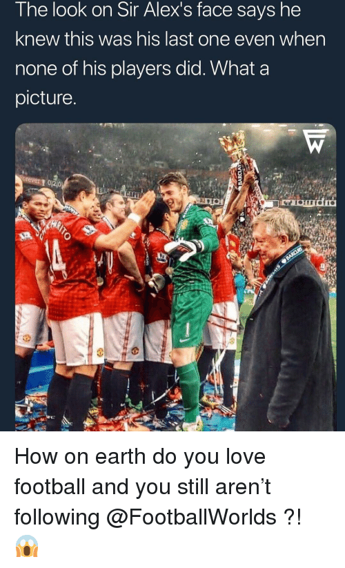 Football, Love, and Memes: The look on Sir Alex's face says he  knew this was his last one even when  none of his players did. What a  picture  rever 1 02D How on earth do you love football and you still aren't following @FootballWorlds ?! 😱