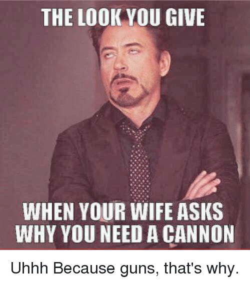 The Look You Give: THE LOOK YOU GIVE  WHEN YOUR WIFE ASKS  WHY YOU NEED A CANNON Uhhh  Because guns, that's why.
