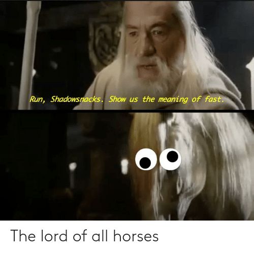 Horses: The lord of all horses