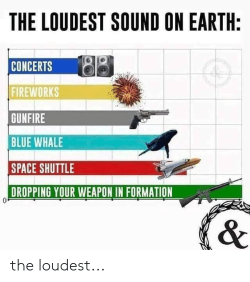 blue whale: THE LOUDEST SOUND ON EARTH:  CONCERTS  FIREWORKS  GUNFIRE  BLUE WHALE  SPACE SHUTTLE  DROPPING YOUR WEAPON IN FORMATION the loudest...