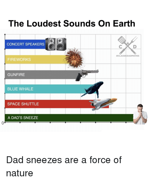 blue whale: The Loudest Sounds On Earth  CONCERT SPEAKERS  @CLASSICDADMOVES  FIREWORKS  GUNFIRE  BLUE WHALE  SPACE SHUTTLE  A DAD'S SNEEZE  0 Dad sneezes are a force of nature