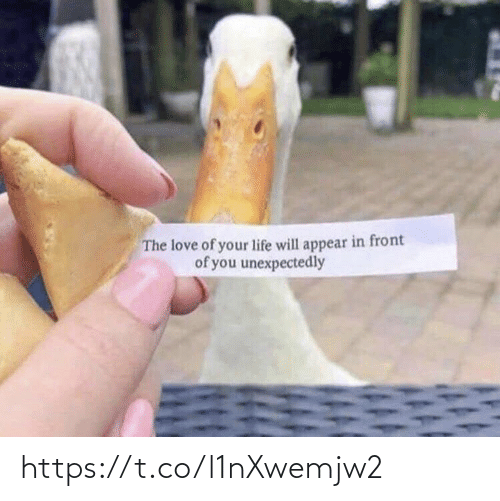 the love: The love of your life will appear in front  of you unexpectedly https://t.co/l1nXwemjw2
