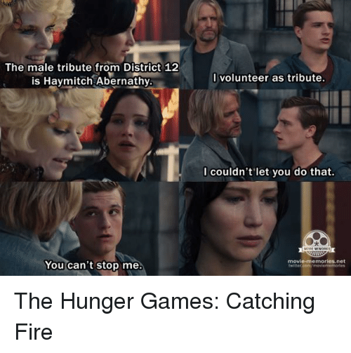 i volunteer as tribute: The male tribute from District 12  is Hay mitch Abernathy  You can't stop me.  I volunteer as tribute.  I couldn't let you do that.  movie memories.net The Hunger Games: Catching Fire