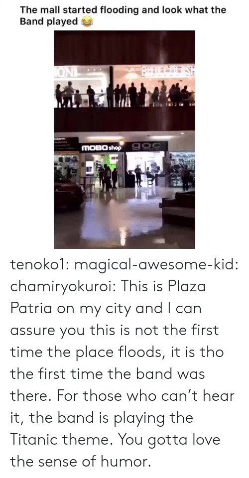 Love, Target, and Titanic: The mall started flooding and look what the  Band played  BrDLCo SH  ONL  MOBO shop 900 tenoko1: magical-awesome-kid:  chamiryokuroi: This is Plaza Patria on my city and I can assure you this is not the first time the place floods, it is tho the first time the band was there.  For those who can't hear it, the band is playing the Titanic theme.  You gotta love the sense of humor.