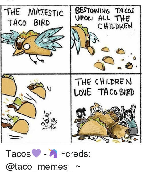 Taco Meme: THE MATESTIC BESTOWING THE  UPON ALL TACO BIRD  CHILDREN  THE CHILDREN  LovE TACO BIRD Tacos💜 -🦄 ~creds: @taco_memes_ ~