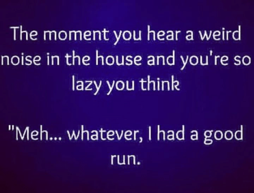 """Lazy, Meh, and Memes: The moment you hear a weird  noise in the house and you're so  lazy you think  """"Meh... whatever, I had a good  run"""