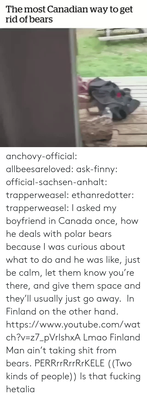 polar bears: The most Canadian way to get  rid of bears anchovy-official: allbeesareloved:  ask-finny:  official-sachsen-anhalt:  trapperweasel:   ethanredotter:  trapperweasel: I asked my boyfriend in Canada once, how he deals with polar bears because I was curious about what to do and he was like, just be calm, let them know you're there, and give them space and they'll usually just go away.  In Finland on the other hand. https://www.youtube.com/watch?v=z7_pVrIshxA  Lmao Finland Man ain't taking shit from bears.   PERRrrRrrRrKELE  ((Two kinds of people))   Is that fucking hetalia