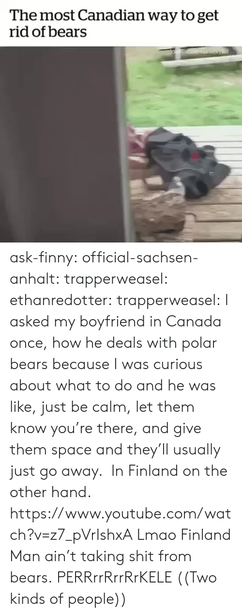 polar bears: The most Canadian way to get  rid of bears ask-finny: official-sachsen-anhalt:  trapperweasel:   ethanredotter:  trapperweasel: I asked my boyfriend in Canada once, how he deals with polar bears because I was curious about what to do and he was like, just be calm, let them know you're there, and give them space and they'll usually just go away.  In Finland on the other hand. https://www.youtube.com/watch?v=z7_pVrIshxA  Lmao Finland Man ain't taking shit from bears.   PERRrrRrrRrKELE  ((Two kinds of people))