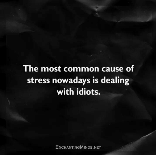 Idioticness: The most common cause of  stress nowadays is dealing  with idiots.  ENCHANTING MINDs.NET