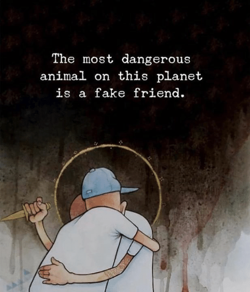 Most Dangerous: The most dangerous  animal on this planet  is a fake friend.