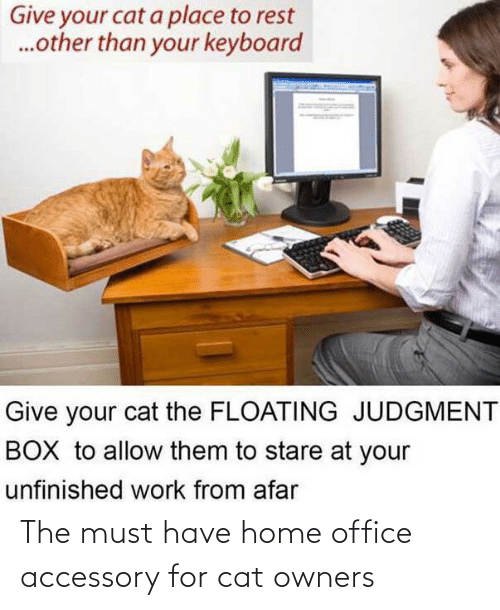 Must: The must have home office accessory for cat owners