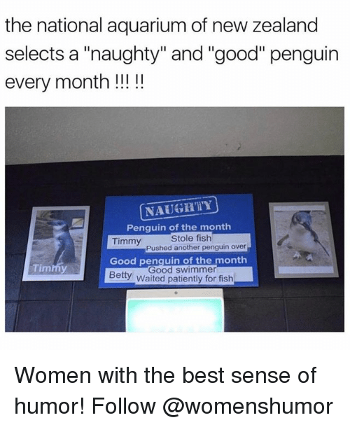 "Memes, Aquarium, and Best: the national aquarium of new zealand  selects a ""naughty"" and ""good"" penguin  every month!!!!  NAUGHTY  Penquin of the monthh  Timmy  Stole fish  Pushed another penguin over  Timmy  Good penquin of the month  Good swimmer  Betty Waited patiently for fish Women with the best sense of humor! Follow @womenshumor"