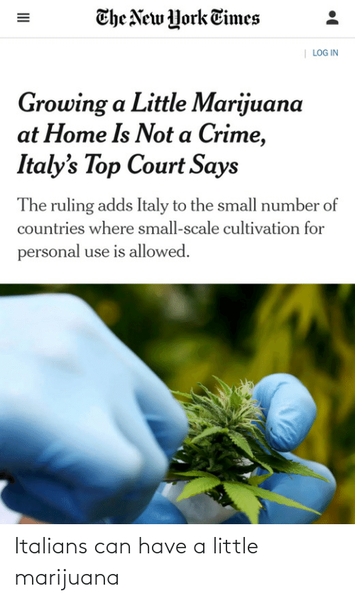 The New: The New York Times  | LOG IN  Growing a Little Marijuana  at Home Is Not a Crime,  Italy's Top Court Says  The ruling adds Italy to the small number of  countries where small-scale cultivation for  personal use is allowed.  II Italians can have a little marijuana