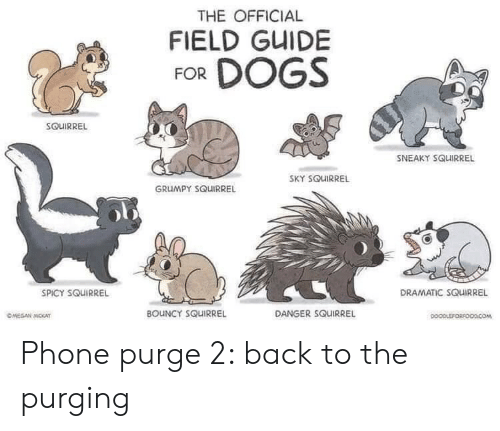 Squirrel: THE OFFICIAL  FIELD GUIDE  FOR DOGS  SOUIRREL  SNEAKY SQUIRREL  SKY SQUIRREL  GRUMPY SQUIRREL  DRAMATIC SQUIRREL  SPICY SQUIRREL  BOUNCY SQUIRREL  DANGER SQUIRREL  OMEGAN MOKAT  DOOPLEFORFOODCOM Phone purge 2: back to the purging
