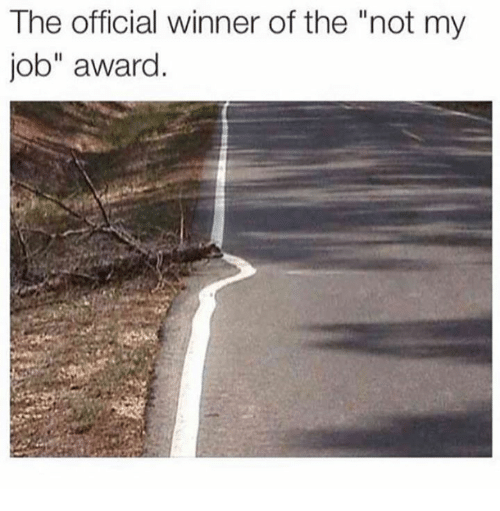 "Job, Awards, and Not My Job Award: The official winner of the ""not my  job"" award"
