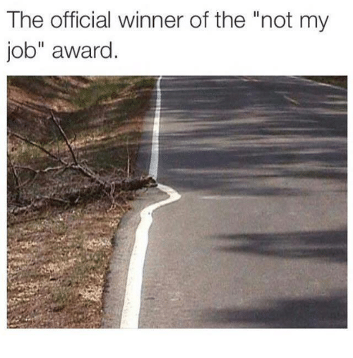 "Memes, Jobs, and 🤖: The official winner of the ""not my  job"" award"