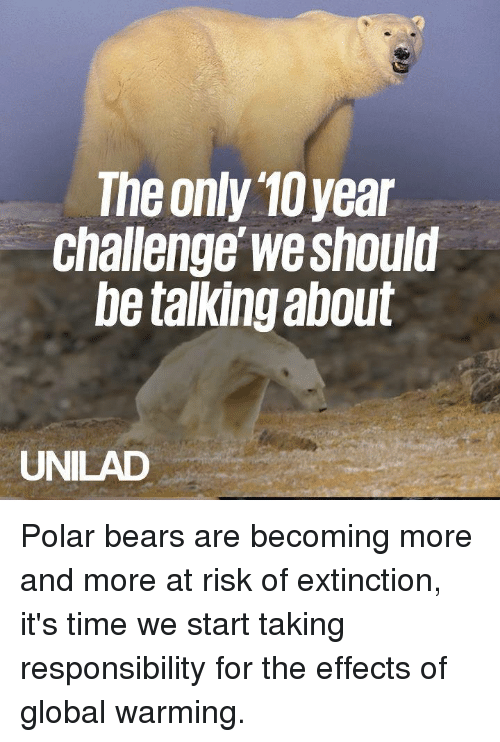 polar bears: The only 10year  Challenge we should  be talking about  UNILAD Polar bears are becoming more and more at risk of extinction, it's time we start taking responsibility for the effects of global warming.
