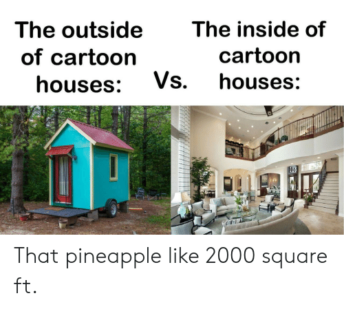 Pineapple: The outside  The inside of  cartoon  of cartoon  Vs.  houses:  houses: That pineapple like 2000 square ft.