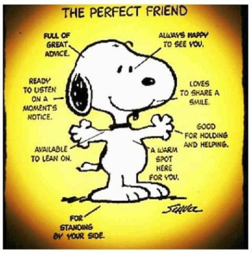 the perfect friend allass happy full of great to see 4696658 the perfect friend allass happy full of great to see vow admce ready