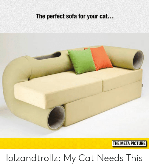 Tumblr, Blog, and Cat: The perfect sofa for your cat...  THE META PICTURE lolzandtrollz:  My Cat Needs This