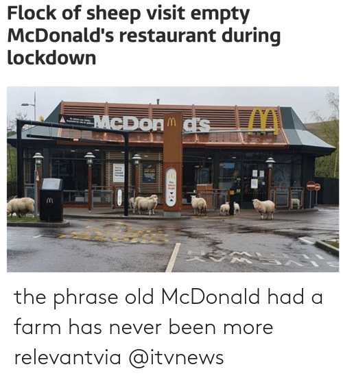 empty: the phrase old McDonald had a farm has never been more relevantvia @itvnews