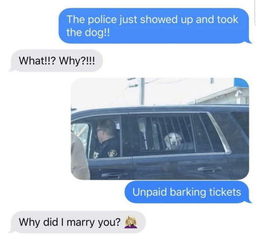 the police: The police just showed up and took  the dog!!  What!!? Why?!!!  Unpaid barking tickets  Why did I marry you?