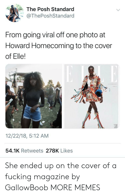 posh: The Posh Standard  @ThePoshStandard  From going viral off one photo at  Howard Homecoming to the cover  of Elle!  12/22/18, 5:12 AM  54.1K Retweets 278K Likes She ended up on the cover of a fucking magazine by GallowBoob MORE MEMES
