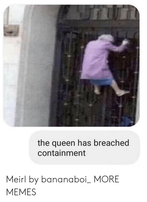 Dank, Memes, and Target: the queen has breached  containment Meirl by bananaboi_ MORE MEMES