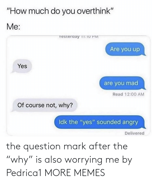 "question: the question mark after the ""why"" is also worrying me by Pedrica1 MORE MEMES"