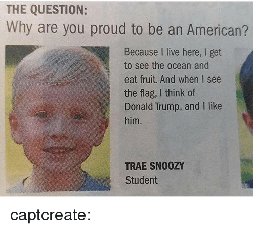 Donald Trump, Gif, and Tumblr: THE QUESTION:  Why are you proud to be an American?  Because I live here, I get  to see the ocean and  eat fruit. And when I see  the flag, I think of  Donald Trump, and I like  him.  TRAE SN00ZY  Student captcreate: