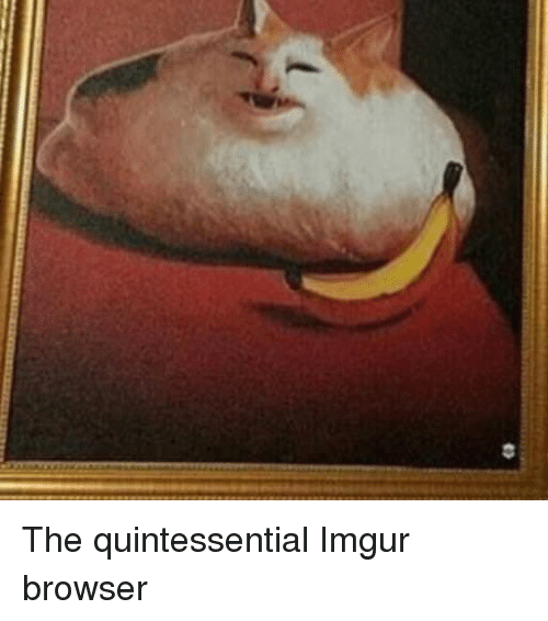 Imgur, Browser, and Quintessential: The quintessential Imgur browser