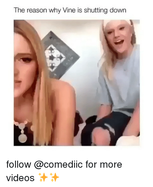 Memes, Videos, and Vine: The reason why Vine is shutting down follow @comediic for more videos ✨✨