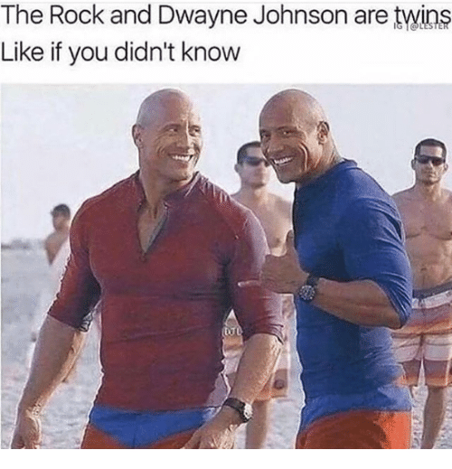 Dwayne Johnson, The Rock, and Twins: The Rock and Dwayne Johnson are twins  Like if you didn't know