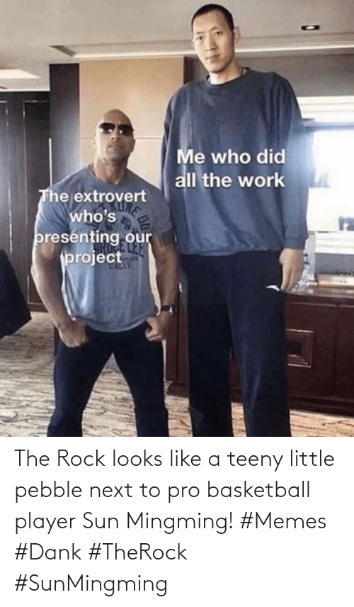 rock: The Rock looks like a teeny little pebble next to pro basketball player Sun Mingming! #Memes #Dank #TheRock #SunMingming