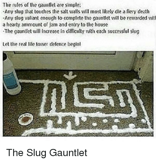 The Salt: The rules of the gauntlet are simple:  Any slug that touches the salt walls will most likely die a fiery death  -Any slug valiant enough to complete the gauntll bo rewarded with  a hearty ammount of Jam and entry to the house  The gaunllet l Incease in difficully with cach successful slug  Let the real life tower defence beginl The Slug Gauntlet