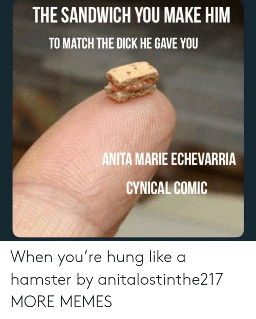To Match: THE SANDWICH YOU MAKE HIM  TO MATCH THE DICK HE GAVE YOU  ANITA MARIE ECHEVARRIA  CYNICAL COMIC When you're hung like a hamster by anitalostinthe217 MORE MEMES