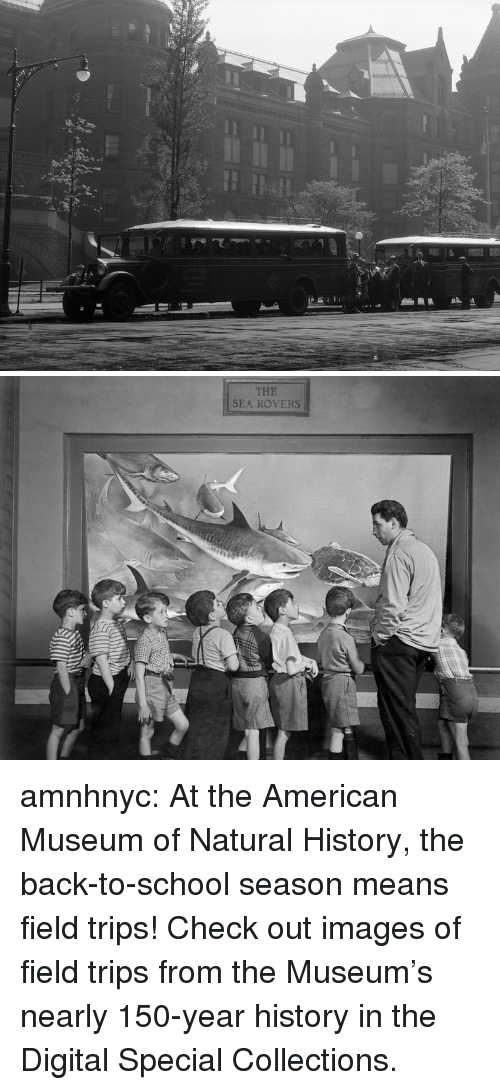 School, Tumblr, and American: THE  SEA ROVERS amnhnyc:  At the American Museum of Natural History, the back-to-school season means field trips! Check out images of field trips from the Museum's nearly 150-year history in the Digital Special Collections.