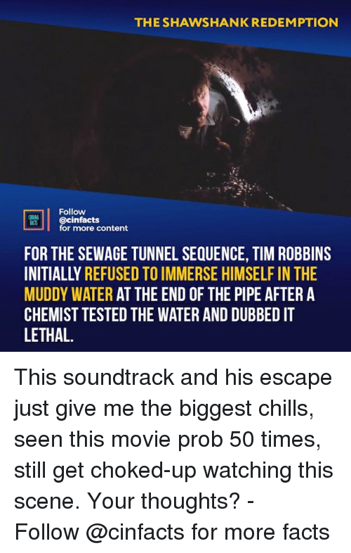 Chemist: THE SHAWSHANK REDEMPTION  Follow  cinfacts  for more content  ACTS  FOR THE SEWAGE TUNNEL SEQUENCE, TIM ROBBINS  INITIALLY REFUSED TO IMMERSE HIMSELF IN THE  MUDDY WATER AT THE END OF THE PIPE AFTER A  CHEMIST TESTED THE WATER AND DUBBED IT  LETHAL. This soundtrack and his escape just give me the biggest chills, seen this movie prob 50 times, still get choked-up watching this scene. Your thoughts?⠀ -⠀⠀ Follow @cinfacts for more facts
