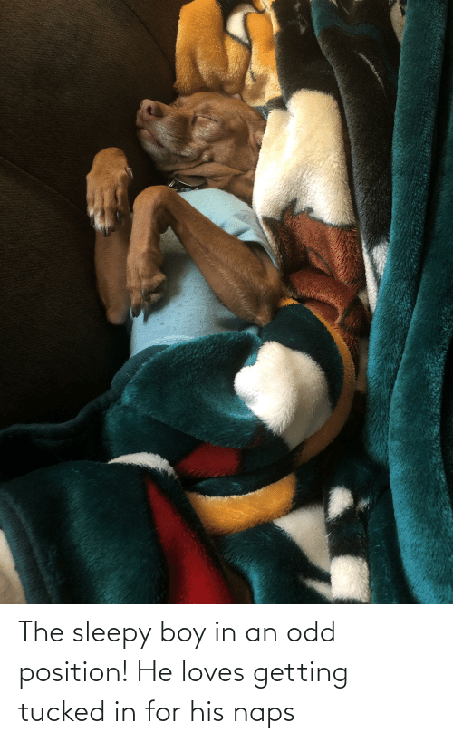 Naps: The sleepy boy in an odd position! He loves getting tucked in for his naps