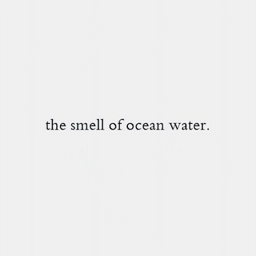Smell: the smell of ocean water