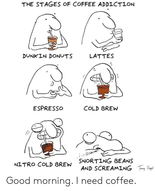 beans: THE STAGES OF COFFEE ADDICTION  DUNKIN DONUTS  LATTES  ESPRESSO  COLD BREW  SNORTING BEANS  AND SCREAMING  S  NITRO COLD BREW Good morning. I need coffee.