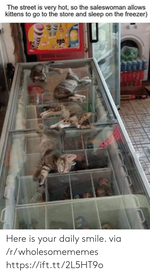 Kittens, Smile, and Sleep: The street is very hot, so the saleswoman allows  kittens to go to the store and sleep on the freezer)  MX Here is your daily smile. via /r/wholesomememes https://ift.tt/2L5HT9o