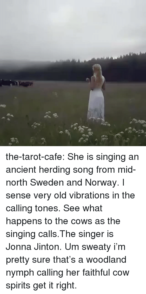 woodland: the-tarot-cafe:    She is singing an ancient herding song from mid-north Sweden and Norway. I sense very old vibrations in the calling tones. See what happens to the cows as the singing calls.The singer is Jonna Jinton.    Um sweaty i'm pretty sure that's a woodland nymph calling her faithful cow spirits get it right.