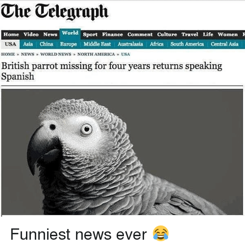 Africa, America, and Finance: The Telegraph  Home Video News World Sport Finance Comment Culture Travel Life WomenI  Asia   China Europe Middle East Australasia Africa South America Central Asia  HOME » NEWS  WORLD NEWS » NORTHAMERICA » USA  British parrot missing for four years returns speaking  Spanish Funniest news ever 😂