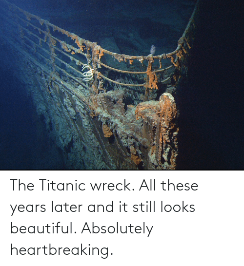 wreck: The Titanic wreck. All these years later and it still looks beautiful. Absolutely heartbreaking.