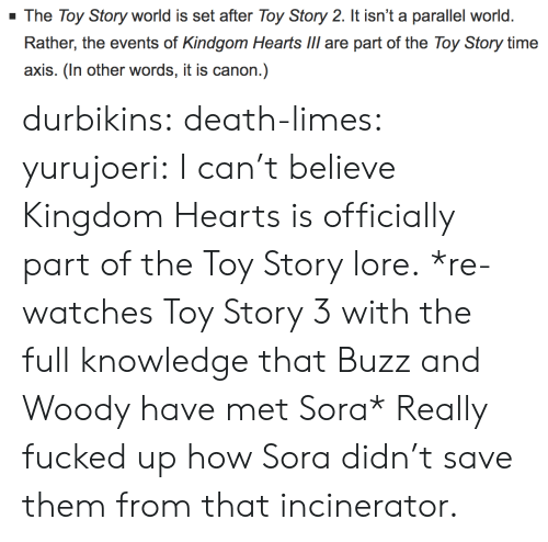 sora: The Toy Story world is set after Toy Story 2. It isn't a parallel world.  axis. (In other words, it is canon.) durbikins: death-limes:  yurujoeri: I can't believe Kingdom Hearts is officially part of the Toy Story lore. *re-watches Toy Story 3 with the full knowledge that Buzz and Woody have met Sora*  Really fucked up how Sora didn't save them from that incinerator.
