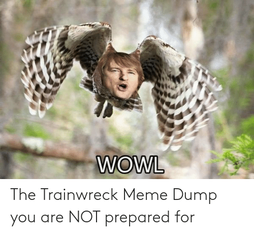 Meme Dump: The Trainwreck Meme Dump you are NOT prepared for