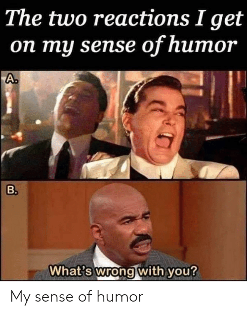 Funny, You, and Whats: The two reactions I get  on my sense of humor  A.  B.  What's wrong with you? My sense of humor